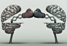 how working memory works, working memory