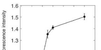 Figure 1. Monitoring of photosynthetic oxygen production in cyanobacteria using ANA sensor ANA sensor was added to the culture of cyanobacteria, and the fluorescence of ANA sensor was monitored. Fluorescence of ANA sensor started to increase after 15 min of illumination, indicating the ANA sensor detected oxygen produced by cyanobacteria.