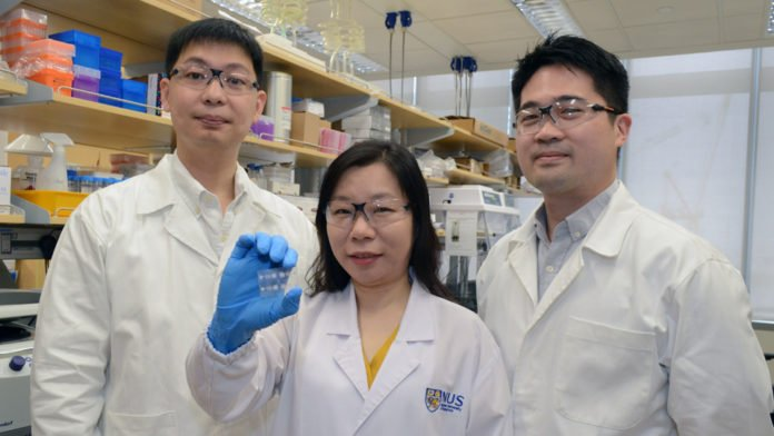 A multidisciplinary team at NUS BIGHEART has developed enVision - a portable, easy-to-use and inexpensive device for quick and accurate screening of diseases.
