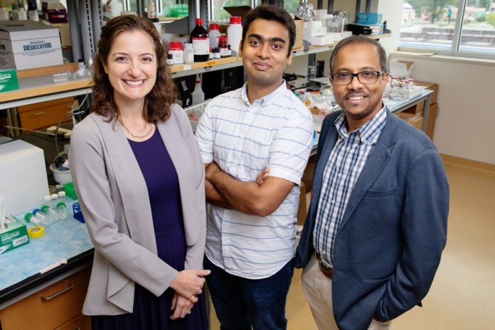 Researchers developed a rapid-sensing gel to measure a molecular marker of eye injury in a teardrop. From left: Carle opthamologist Dr. Leanne Labriola, Illinois visiting scholar Ketan Dighe and professor Dipanjan Pan.