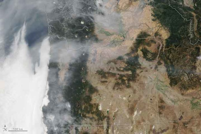 The Moderate Resolution Imaging Spectroradiometer, or MODIS, on NASA's Terra satellite acquired these natural-color images. The photo on the left shows the enormous amount of smoke produced during fires in Oregon last summer. The image on the right was taken on a clear day. A Goddard engineer has used MODIS data to train algorithms how to detect wildfires. Credits: Joshua Stevens, NASA Earth Observatory