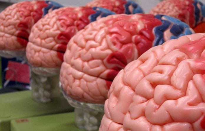 New technique to listen brain activity