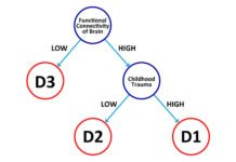 The study for the first time has identified three distinct sub-types of depression. D1: This sub-type is characterized by high functional connectivity of the brain and a history of childhood trauma. D2: This sub-type is characterized by high functional connectivity of the brain and an absence of childhood trauma. D3: This sub-type is characterized by both low functional connectivity of the brain and absence of childhood trauma. Credit: Neural Computational Unit, OIST.