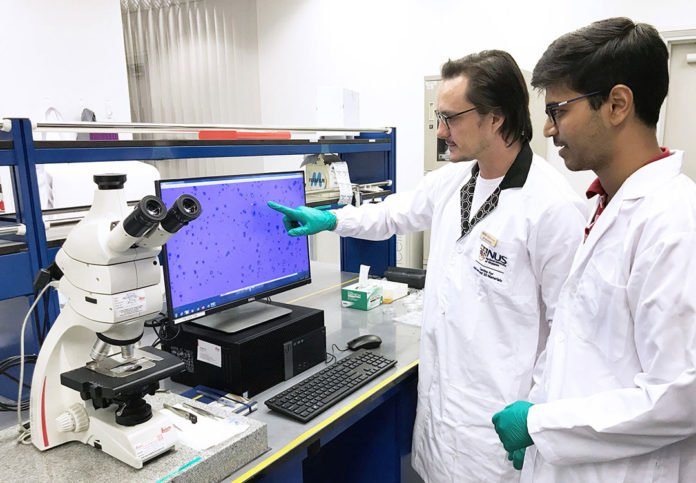 Researchers from the NUS Centre for Advanced 2D Materials examining the quality of graphene samples. Credit: National University of Singapore