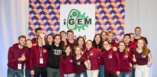 """The """"Phactory""""-team at the award ceremony in Boston. They received the second prize for their new production method of bacteriophages at the international iGEM-competition. (Image: G. Westmeyer / TUM)"""