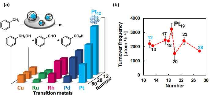 Subnano particles are more active as catalysts. (a) Less oxophilic platinum was superior to other noble metals in the aerobic toluene oxidation. (b) The Pt19 SNC was the highest catalytic performance among other Pt SNCs between 12 and 28 atoms.