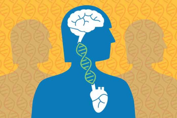 In the largest genetic study of Alzheimer's disease, researchers at Washington University School of Medicine in St. Louis and the University of California, San Francisco, have found that genes that increase risk of cardiovascular disease also heighten the risk for Alzheimer's.