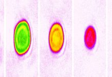 False-color images showing variations in atom numbers (1 to 5 atoms, left to right) and density in different lattice cells of JILA's strontium lattice atomic clock. JILA researchers observed shifts in the clock's frequency that arise from the emergence of multi-particle interactions when three or more atoms occupy a single cell. Credit: Aki Goban, Ye group/JILA
