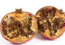 rotten pomegranade