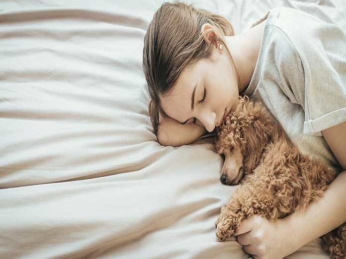 It's better to sleep next to a dog than a man, study