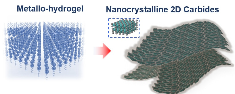 Molecules in gelatin naturally self-assemble in flat sheets, carrying the metal ions with them (left). Heating the mixture to 600 degrees Celsius burns off the gelatin, leaving nanometer-thin sheets of metal carbide. (Xining Zang illustration, copyright Wiley)