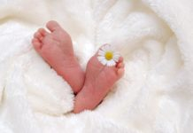 How a baby's gender is determined?