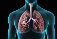 New tool to identify which patients with COPD are at risk of death