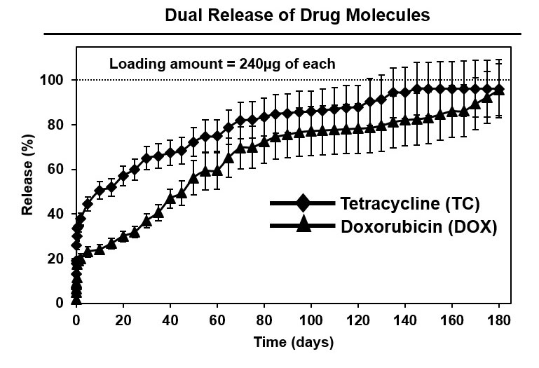 dual release of drug molecules