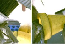 "On the left, the gripper is holding the brush and there are some objects (yellow cup, blue plastic block) in the background. On the right, the gripper is holding the yellow cup and the brush is in the background. If the left image was the desired outcome, a good reward function should ""understand"" that the two images above correspond to different objects."
