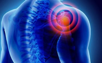 How the pain signal travels throughout the body?