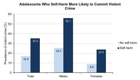 Young people who self-harm are three times more likely to commit violent crime than those who do not, according to new research from the Center for Child and Family Policy at Duke University.  CREDIT Duke Center for Child and Family Policy