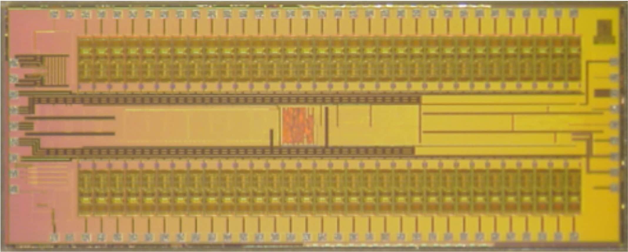 WAND's custom integrated circuits. (credit: Rikky Muller, UC Berkeley)