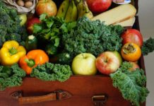 Human diet causing 'catastrophic' damage to planet