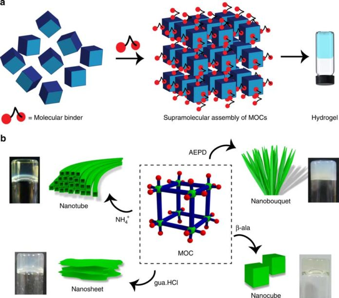 Scientists created a method to produce designer hydrogels