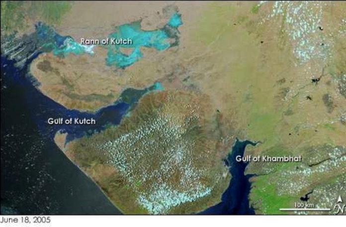 Gujarat Gulfs