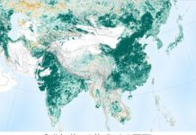 India and China are greening faster than rest of the world