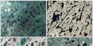 A new study uses CubeSats to measure short-term changes in northern hemisphere lakes. The study region includes (clockwise starting at the top left): Mackenzie River Delta, Northwest Territories, Canada; Canadian Shield, north of Yellowknife, Northwest Territories, Canada; Yukon Flats, Alaska and Tuktoytaktuk Peninsula, Northwest Territories, Canada. Credit: Planet