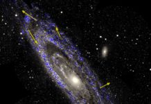 Stellar motions in the Andromeda galaxy