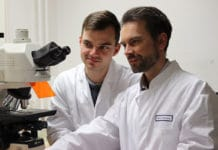 Doctoral candidate Thomas Wohlfahrt (l.), lead author of the article, and group leader Dr. Andreas Ramming in front of an immune fluorescence microscope. (Image: Uni-Klinikum Erlangen/Andreas Ramming)