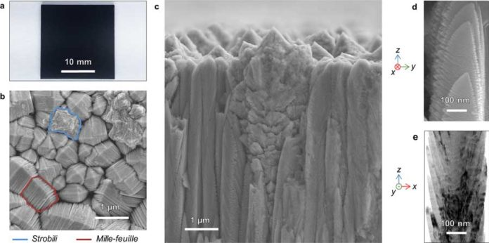 As deposited NsARC TiO2. (a) Stainless-steel substrate with 10μm thick coating. (b) Scanning Electron Microscope (SEM) image of coating surface morphology with mille-feuilles and strobili structures indicated. (c) SEM fracture surface cross-section showing mille-feuilles columns and strobili dendrites both with strong z-orientation. (d) High magnification SEM image of side-view of a mille-feuilles column. (e) Bright field TEM image of a mille-feuilles column, probably rotated 90° relative to (d).