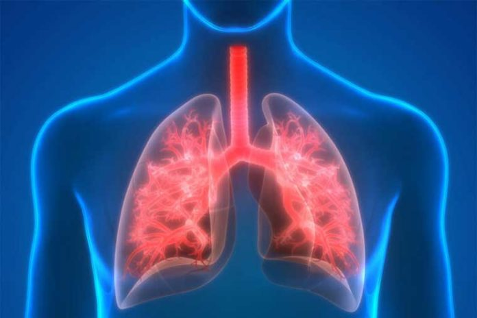Researchers at Washington University School of Medicine in St. Louis have discovered clues to a particularly deadly form of rejection that can follow lung transplantation. Called antibody-mediated rejection, the condition remains impervious to available treatments and difficult to diagnose. The researchers have identified, in mice, a process that may prevent the condition and lead to possible therapies to treat it.