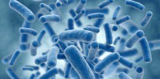 Antibiotic resistant bacteria schematic representation