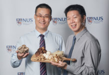 A six-year study, led by Assistant Professor Feng Lei (left) from the National University of Singapore, found that seniors who ate more than 300 grams of cooked mushrooms a week were half as likely to have mild cognitive impairment. Dr Irwin Cheah (right) is a member of the research team. Credit: National University of Singapore