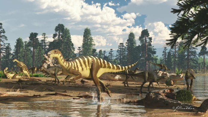 Artist's impression of a Galleonosaurus dorisae herd on a riverbank in the Australian-Antarctic rift valley during the Early Cretaceous, 125 million years ago. The newly-named, dinosaur wallaby-sized herbivorous dinosaur, was identified from five fossilized upper jaws in 125-million-year-old rocks from the Cretaceous period of Victoria, southeastern Australia. Credit: Image copyright James Kuether