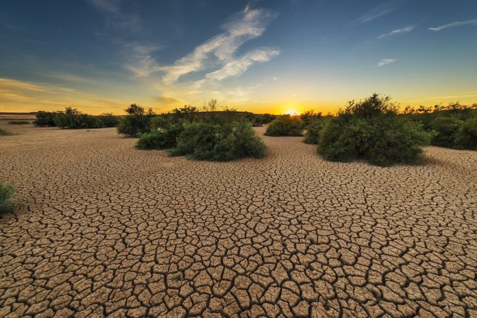 Drought. Low soil moisture posing threat in most river basins