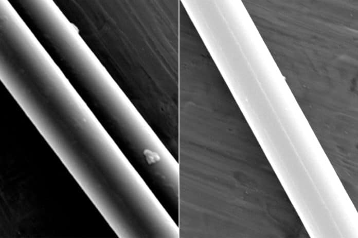 Scanning electron microscope images show filaments of spider dragline silk. Photo courtesy of the researchers