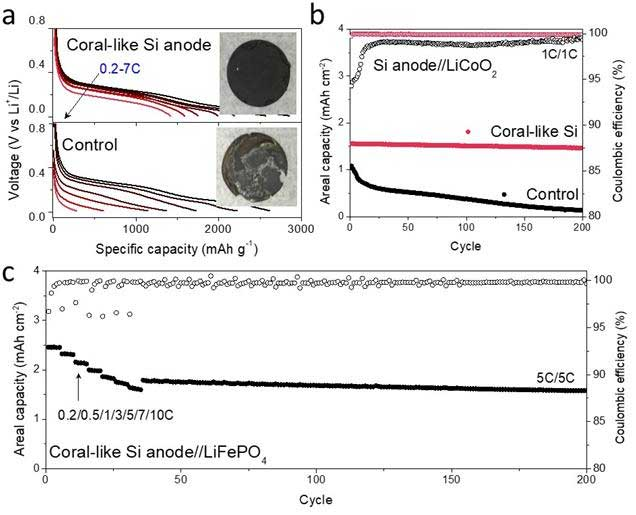 Lithium-storage properties of N-PSi@C and the control anodes.