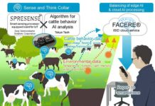 Using Edge AI to listen to the silent voices of cattle