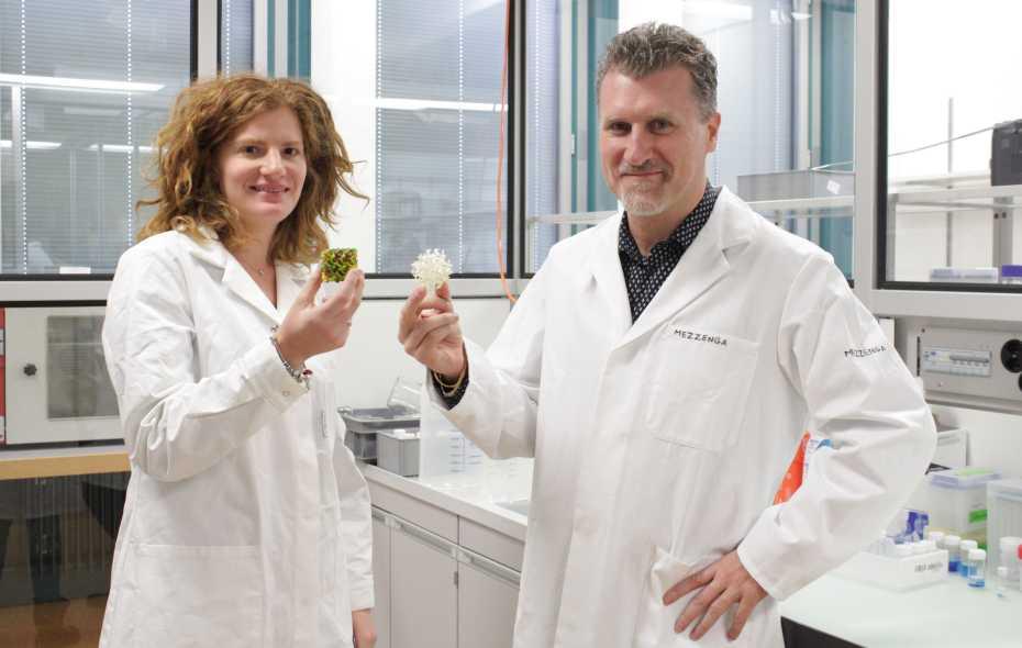 Livia Salvati Manni and ETH Professor Raffaele Mezzenga with models of lipid mesophases. (Image: P. Rüegg / ETH Zurich)