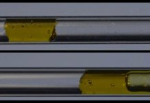 A gel-like yield stress fluid, top, moves as a plug without shearing in a tube with the new surface coating. At bottom, the same fluid is seen shearing while it flows in an uncoated tube, where part of the fluid gets stuck to the tube while part of it continues to flow.