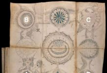 Unfolded Map from Voynich Manuscript