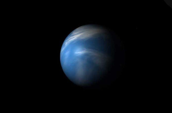 Forbidden planet discovered in Neptunian Desert around its star