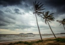MIT scientists have found that an interplay between atmospheric winds and the ocean waters south of India has a major influence over the strength and timing of the South Asian monsoon.