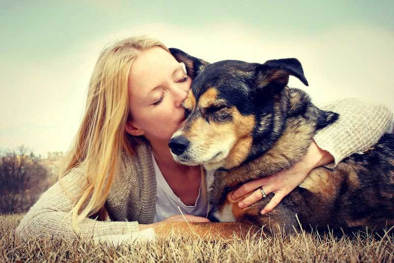 Your genetic make-up decide whether you will own a dog or