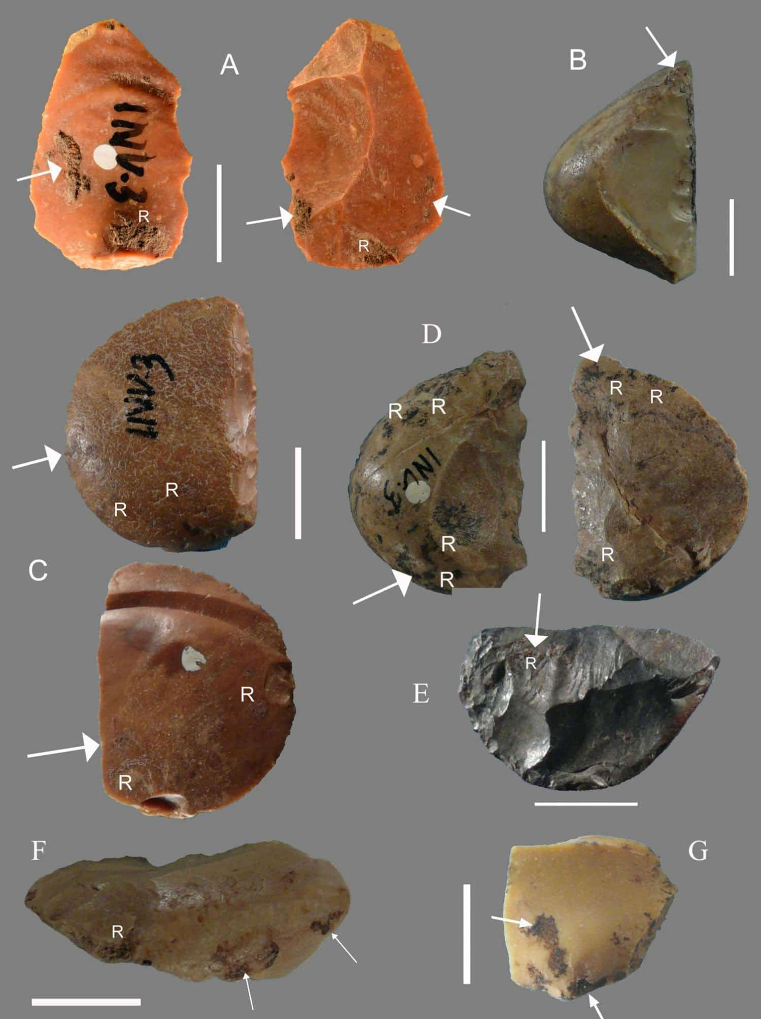 "Flints bearing traces of pine resin. The letter ""R"" indicates the presence of visible resin, and the arrows point to spots where researchers sampled material for chemical analysis. (Credit: Degano et al. 2019, PLOS ONE)"
