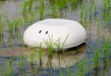 Duck Robot Helping Rice Farming in Northeastern Japan