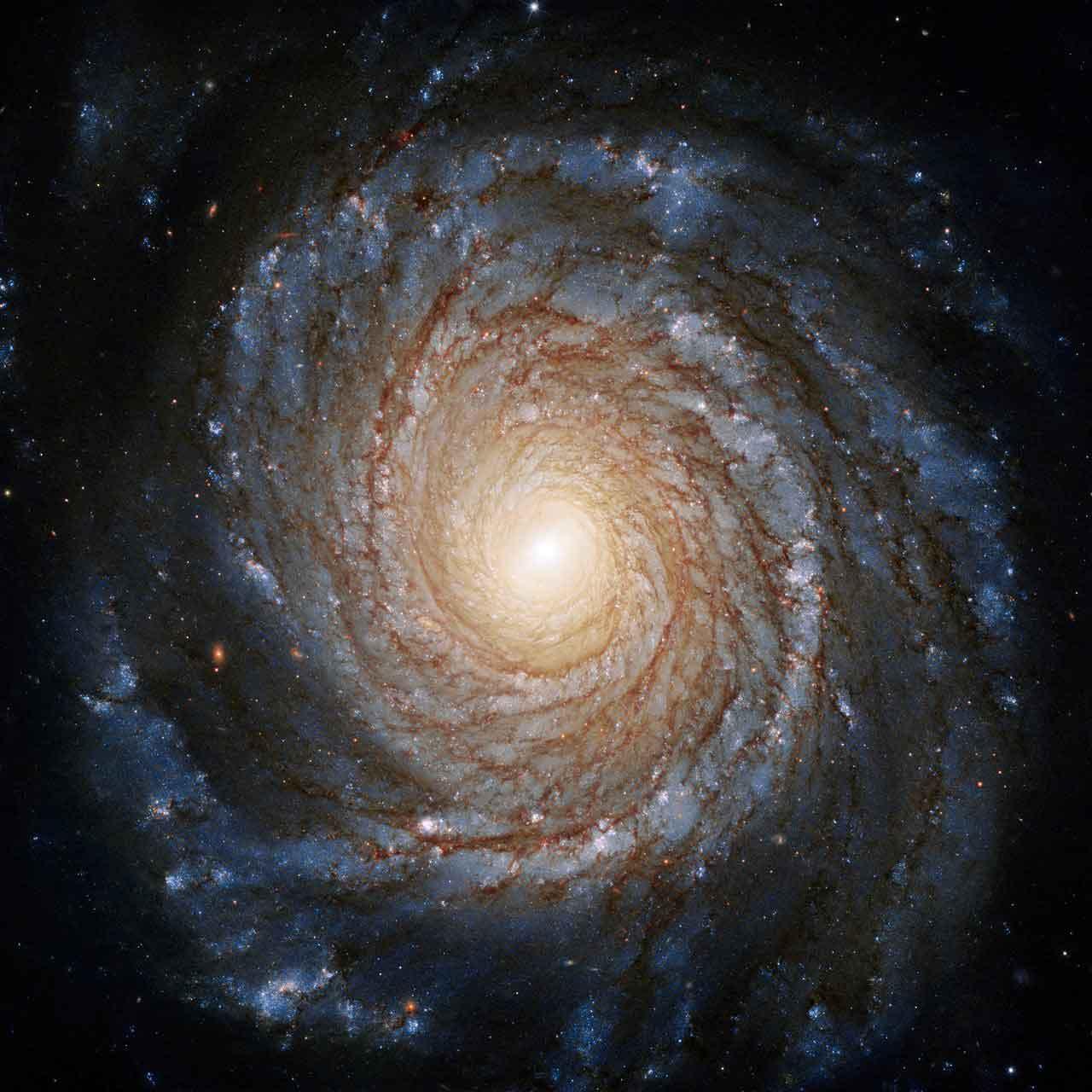 Galaxy NGC 3147