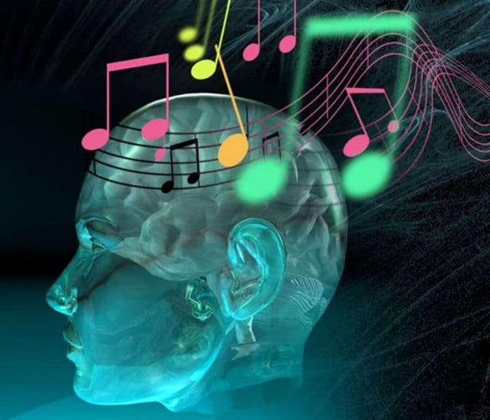 How our brain distinguishes between voice and sound?