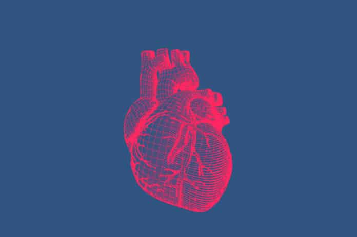 Higher iron levels associated with a lower risk of heart disease