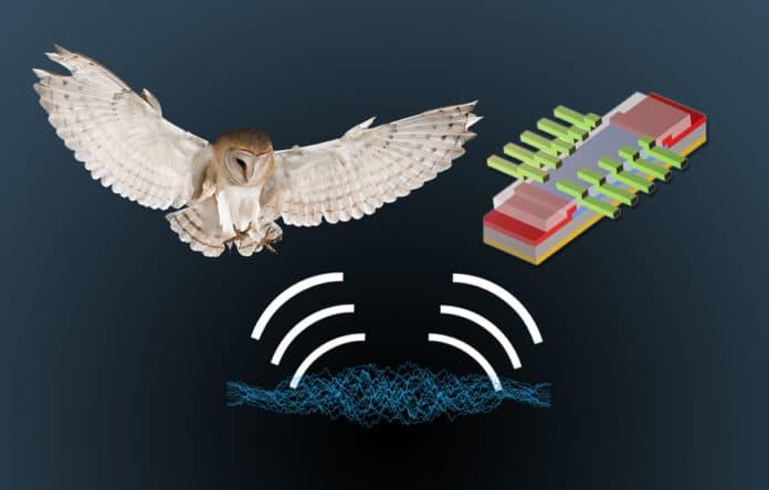Split-gated transistor for mimicking the neurobiological algorithm that mimics sound localization in barn owls. IMAGE: JENNIFER MCCANN & SARBASHIS DAS, PENN STATE